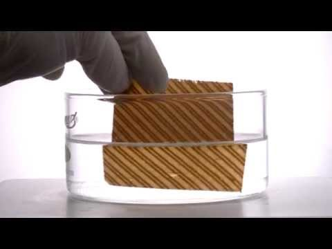 4D printing Programmable Wood
