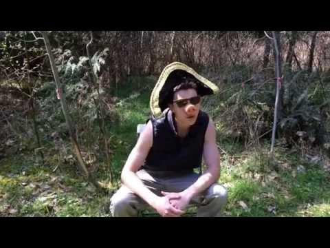Napoleon - Animal Farm Music Video