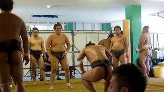師匠琴ノ若の現役時代は、大きな身体を生かした寄りや上手投げは、スケ...