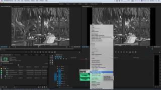 "Основы видеомонтажа в Adobe Premiere Pro CC""  Урок 5"