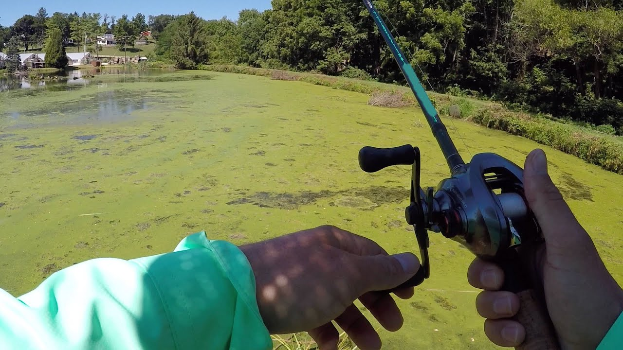 25 bass fishing challenge youtube for Bass fishing challenge