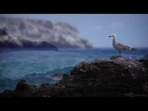 Riviera Nayarit, Mexico - Unravel Travel TV