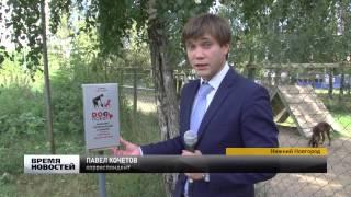 Дог-пакеты установили в парке в Нижнем Новгороде
