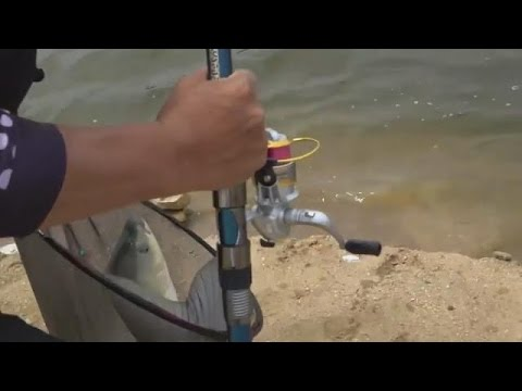 Best Rod And Reel Combos For Bass Trout Carp In Lake River Pond Fishing