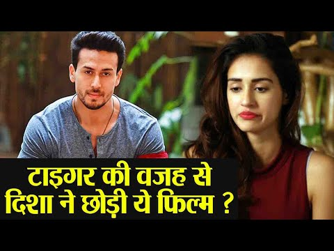 Disha Patani rejects this film because of Tiger Shroff  FilmiBeat