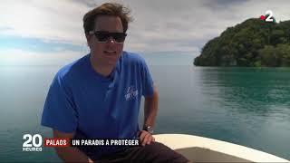 Les îles Palaos, un paradis à protéger