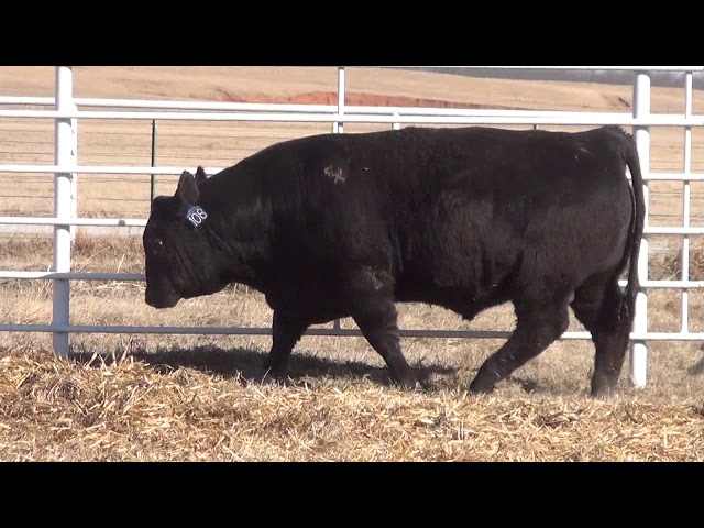 Express Ranches Lot 108