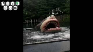 7월 13일-유니버셜 스튜디오 재팬  죠스를 타다(USJ, Universal Studios Japan JAWS)