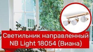Светильник направленный NB LIGHT 18054 (NB LIGHT 40244-cl426-pla000-cp000 Виана) обзор