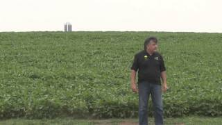 2015 Corn Belt Crop Tour Kansas State Video