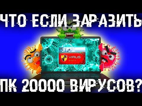 Что если заразить компьютер 20000 BИPУCAМИ?