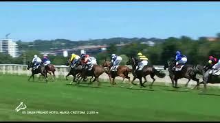 Vidéo de la course PMU GRAN PREMIO HOTEL MARIA CRISTINA