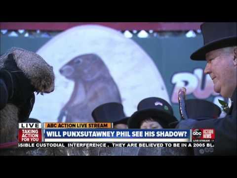 Punxsutawney Phil says 6 more weeks of winter