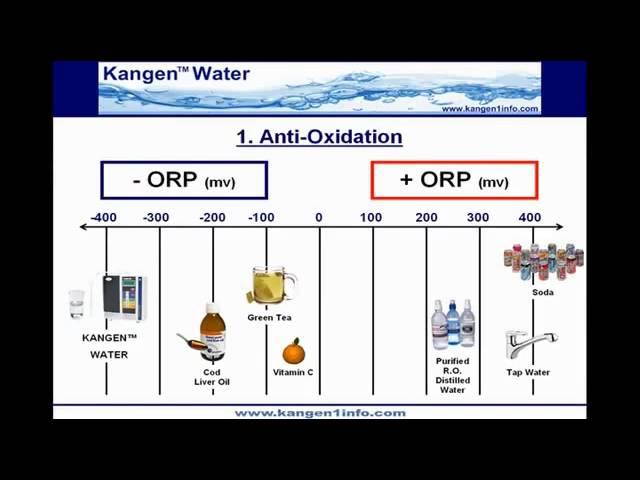 2  Kangen Water Demo   ORP   Antioxidants   Anti aging hosted by Lauren Hacker. Enagic