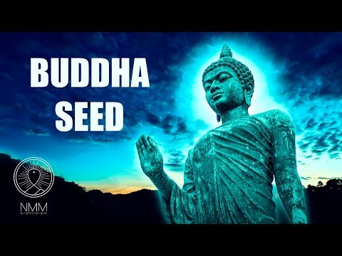 "Buddhist Meditation Music for Positive Energy: ""Buddha seed"", Buddhist music, Calming music 42404B"