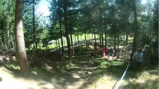 levin downhill 2012