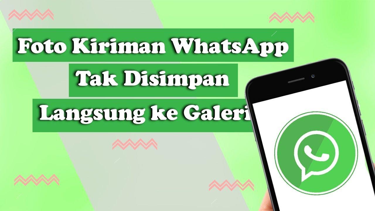 Tak Lagi Memenuhi Memori Cara Agar Foto Dari Whatsapp Tidak Langsung Masuk Galeri Youtube