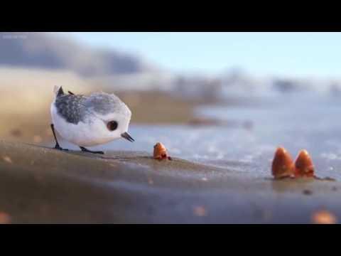 Piper - Short Movie Pixar - It is so nice