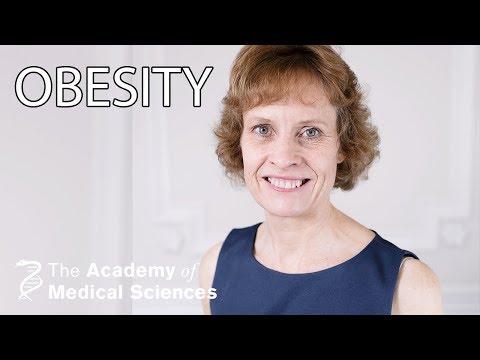 Obesity, diet and health research | Professor Susan Jebb OBE FMedSci