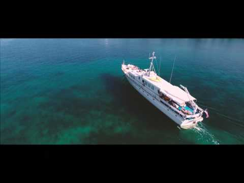 MY Play Fellow - Luxury Charter in Croatia
