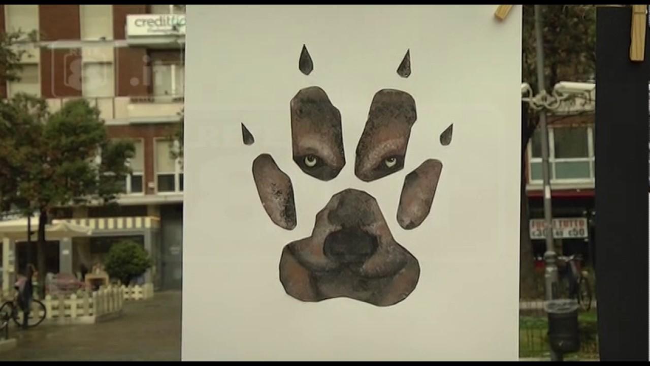 Wwf centinaia di disegni per salvare i lupi youtube for Disegni di lupi facili