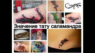 Значение тату саламандра - информация и фото примеры рисунков для сайта tattoo-photo.ru
