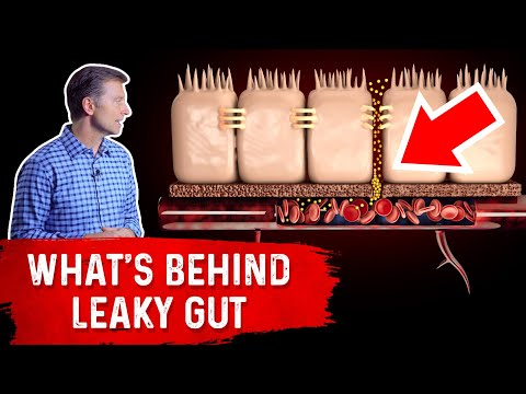 what's-really-behind-leaky-gut