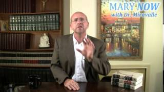 Mary and the World Economy - MNOW 7