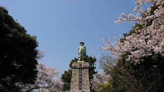 【浅野財閥総帥】浅野総一郎銅像【京浜工業地帯の産みの親】
