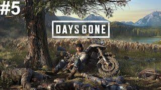 Days Gone No jak tam