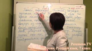 Peremena TV Русский язык, Быстрова, № 240