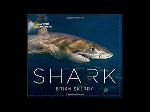 Brian Skerry Interview - Shark