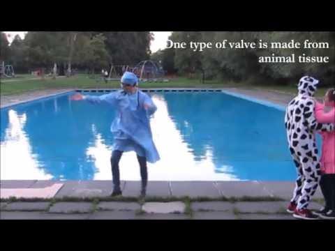 Dance Your PhD 2016 WINNER : A polymeric prosthetic heart valve
