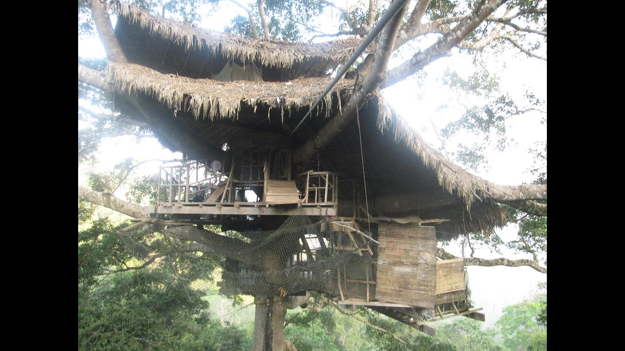 tour a real treehouse peak inside the canopy dwellings at laos gibbon experience - Tree House Inside