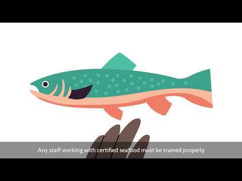 MSC And ASC Chain Of Custody Training Animations - Fish Counters US