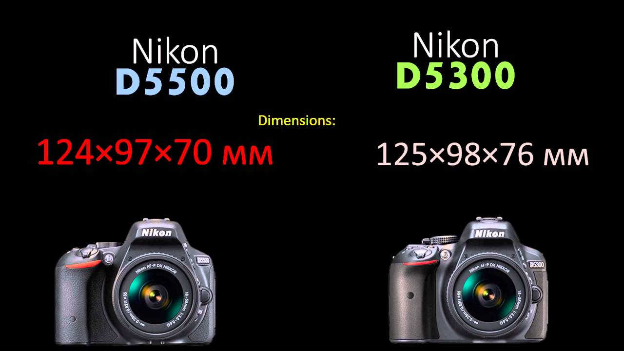 Nikon D5300 vs D5500 – Which is Better For You? - Cameras