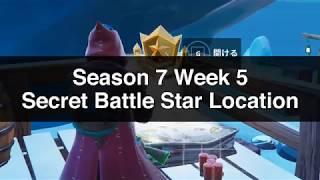 Fortnite - Season 7 Week 3 Secret Battle Star Location