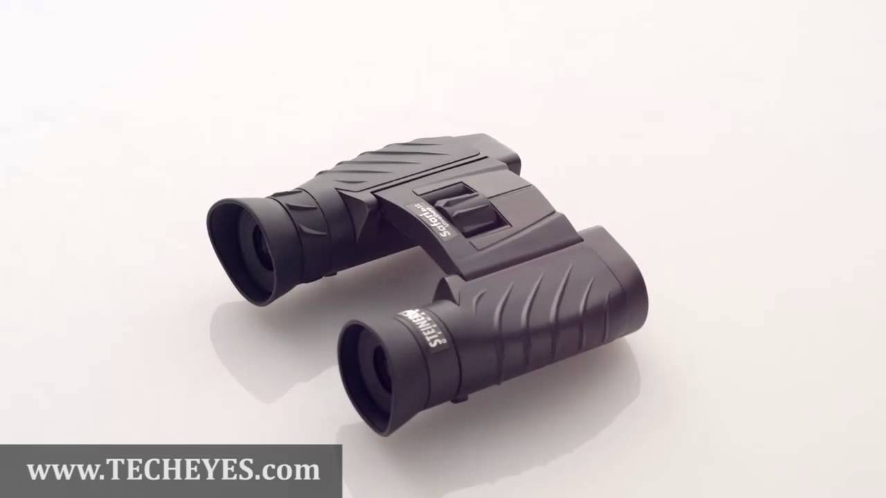 Steiner safari ultrasharp 8x22 binocular 360 degree view video
