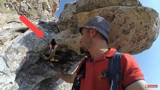 define kasası kırarken tılsım yılan ! çok yüksekte ölüm tehlikesi ! nasıl buldum !