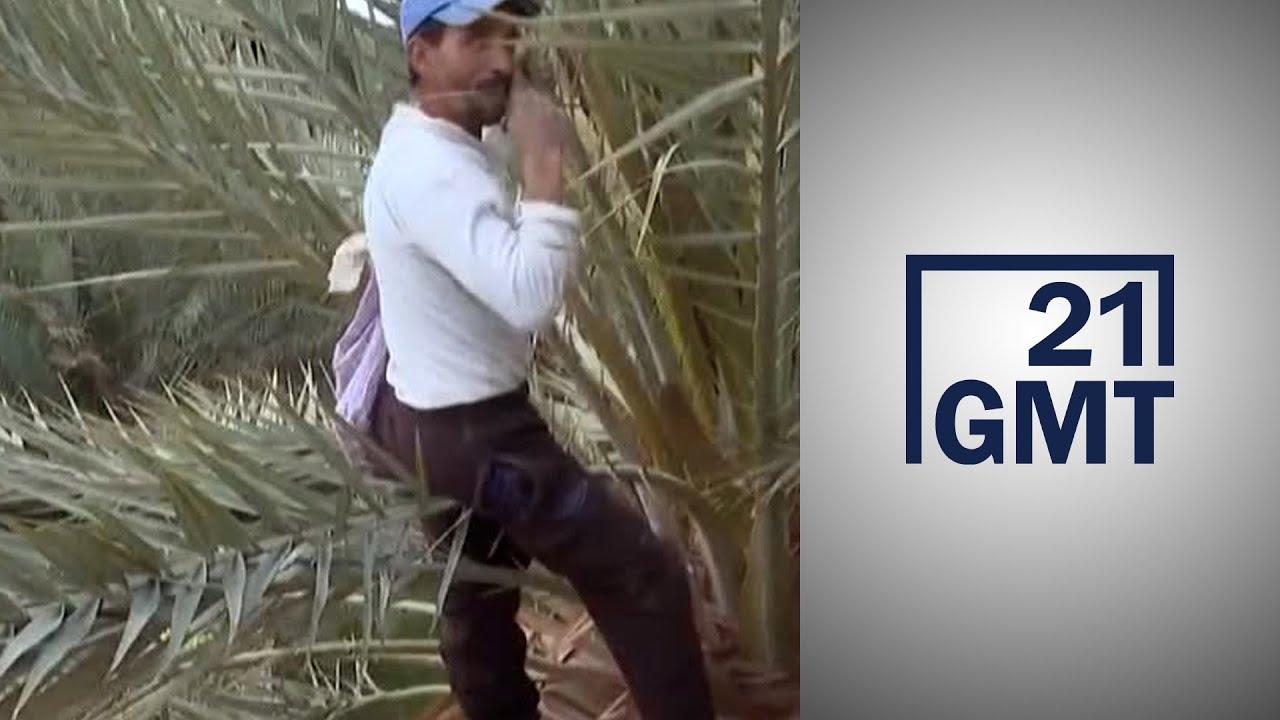 مأساة المزارعين المغاربة بعد طردهم من وادي العرجة