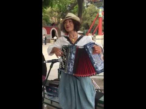 Accordion street performance in China
