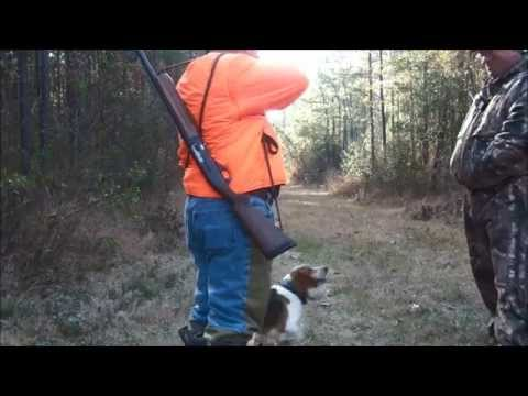 Deer Hunting with Dogs Southampton County Va.