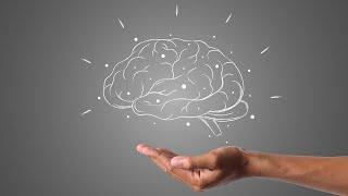Lissy Götz: Programmiere Dein Gehirn – es wird Dich verstehen: die Alpha-Synapsen-Programmierung