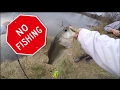 Is Fishing Going to be ILLEGAL?