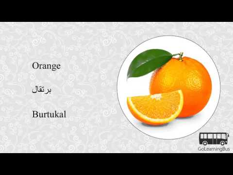 Learn Arabic Visual Dictionary - Fruits and Vegetables via Videos by GoLearningBus(3H)