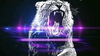 Martin Garrix - Animals (Slowed Down)