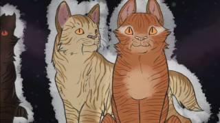 Коты воители - Звездное племя [Заказ с канала -Золотогривая]