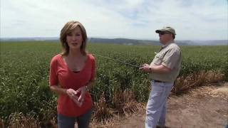 Idaho Farmer Using Unmanned Aircraft - America's Heartland