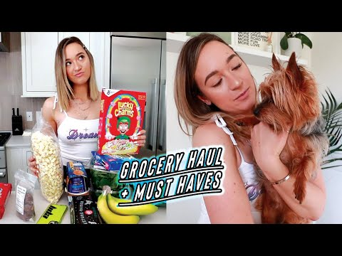 Grocery Haul + Must Haves Every Dog Owner Needs!
