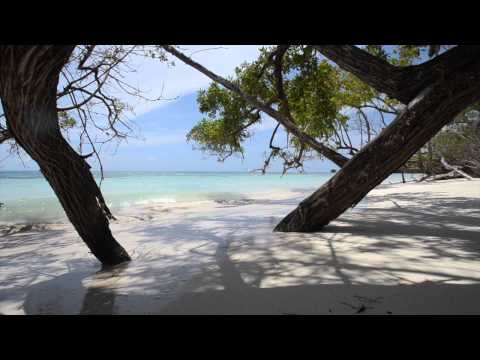 Antigua's Best Beaches Volume 2 Sneak Peak